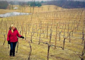 Maggie Malick in the vineyard during winter